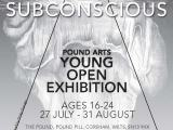 Opportunity: Pound Arts Young Open Exhibition2013