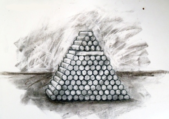 shells drawing