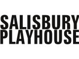 Job: Head of Development, SalisburyPlayhouse