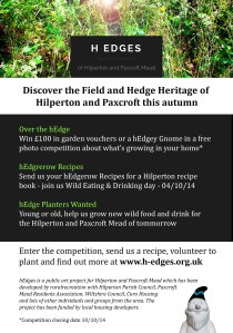 hEdges A5 Flyer Back_v2
