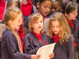 Guest Blog:  Sophie Amstell, Learning and Participation Manager at Ageas Salisbury International Arts Festival, reflects on the Wiltshire-wide schools project Singing Together 2016.